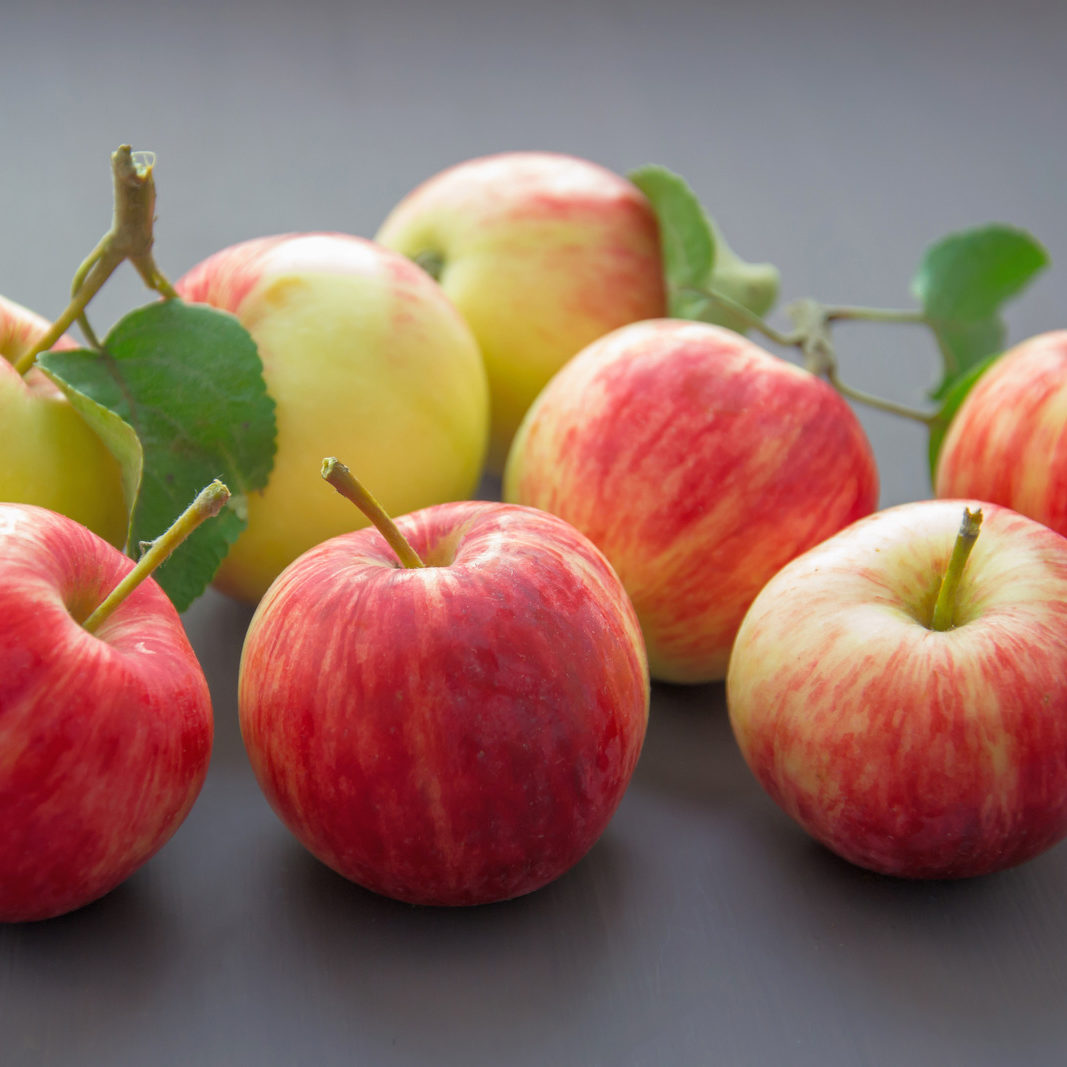 Canva - Close-up Photography of Apples