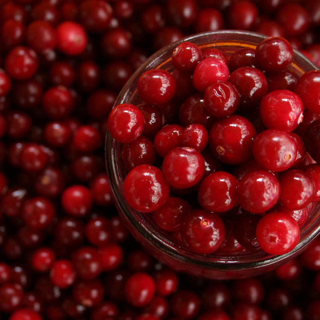 Canva - Close-up of cranberries